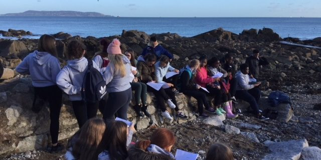 5th year Biology seashore field study day
